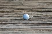 Golf 265